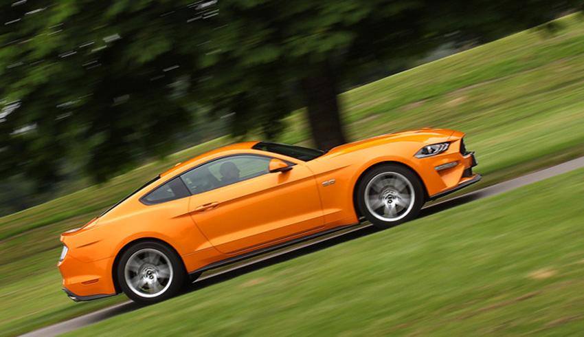Mustang -Pan
